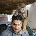See AhmedRoushdy's Profile