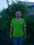 See vovogan's Profile