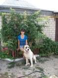 See Anjelika's Profile